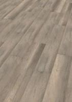 Vorschau: Calistoga Grey   PLC wineo 1000 wood