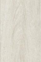 Vorschau: Prime Arctic Oak