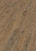 Vorschau: Valley Oak Soil   PLC wineo 1000 wood