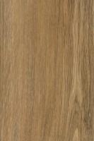 Vorschau: Sylvan Gold Oak